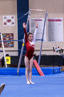 2017 State Gymnastics session 2 level 2